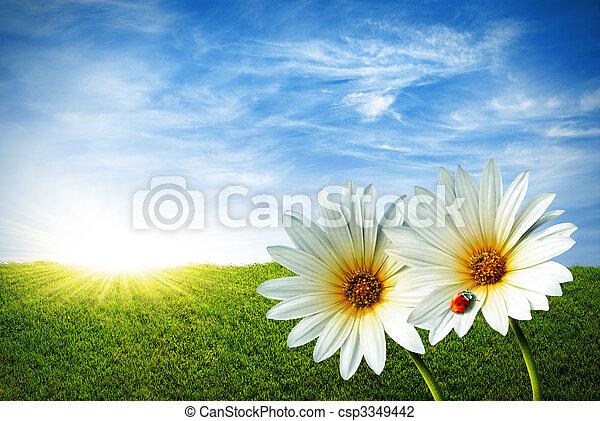 весна - csp3349442