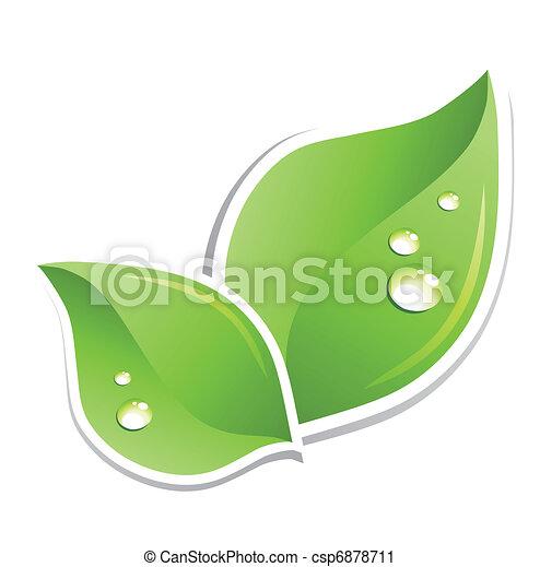 воды, зеленый, вектор, лист, droplets. - csp6878711
