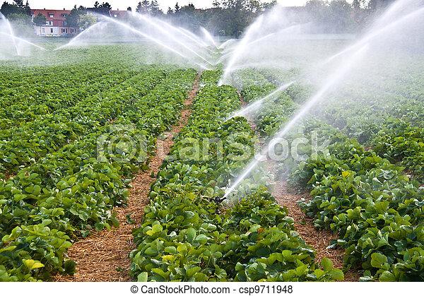 воды, спрей, сельское хозяйство - csp9711948