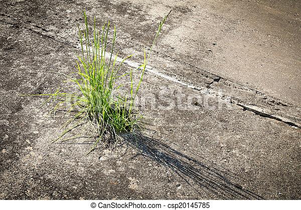 трава бетон