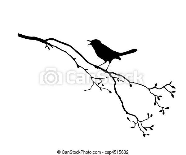 дерево, вектор, силуэт, птица, филиал - csp4515632