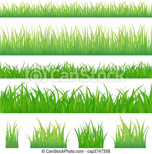 зеленый, трава, backgrounds, 4, tufts - csp3747358