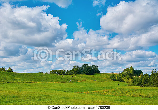 земельные участки, выгон - csp41780239