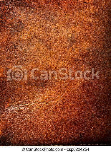 кожа, старый, tattered - csp0224254