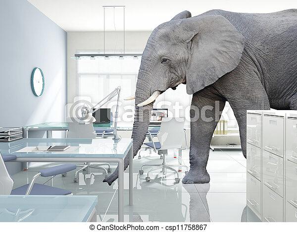 комната, слон - csp11758867