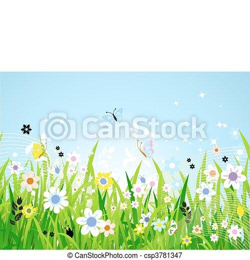 красивая, весна, луг - csp3781347