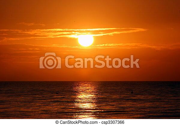 красивая, остров, флорида, восход, sanibel - csp3307366