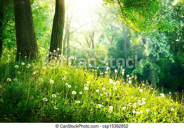 красивая, landscape., весна, nature., trees, зеленый, трава - csp15362852