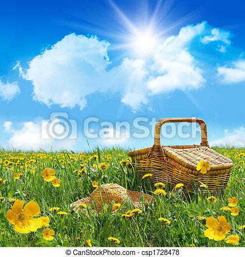 лето, пикник, солома, поле, корзина, шапка - csp1728478
