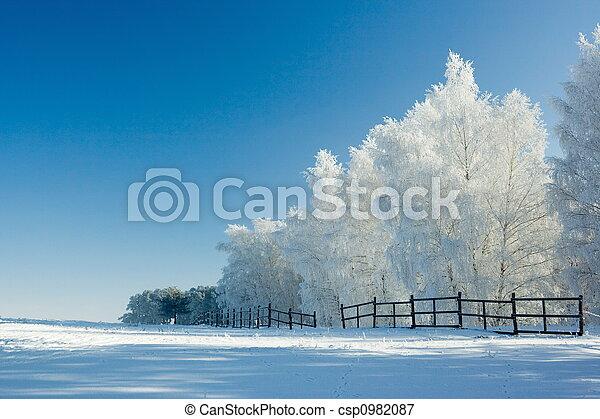пейзаж, зима, trees - csp0982087