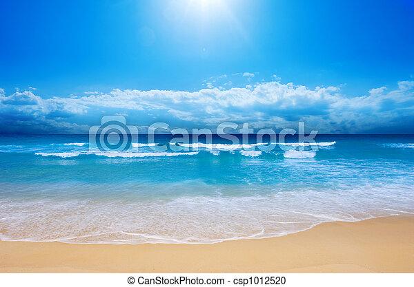 пляж, рай - csp1012520