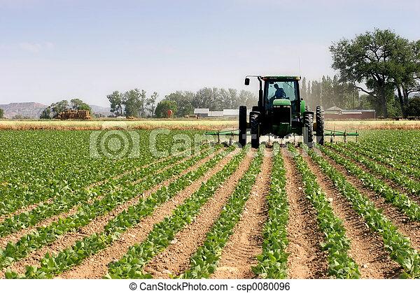 поля, plowing, трактор - csp0080096