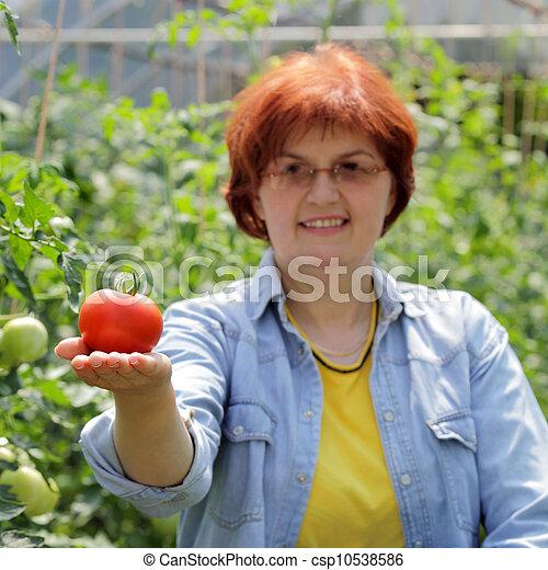 сельское хозяйство - csp10538586