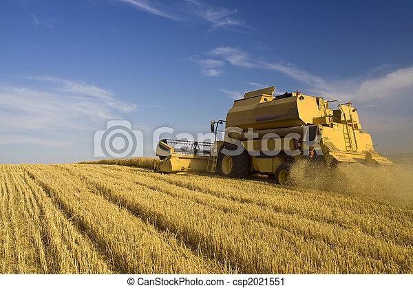 сельское хозяйство, -, скомбинировать - csp2021551