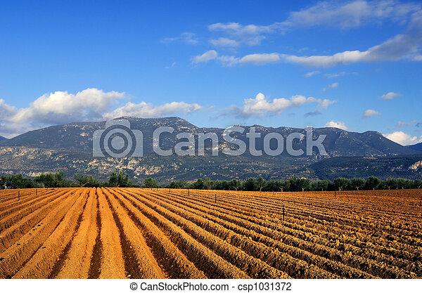 сельское хозяйство - csp1031372
