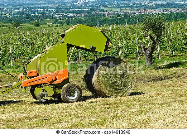 сельское хозяйство - csp14613949