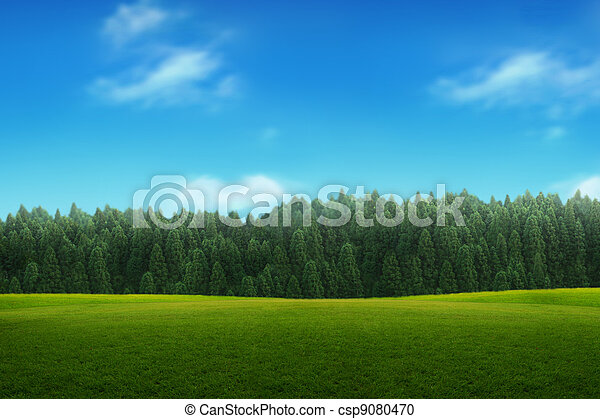 синий, небо, молодой, пейзаж, зеленый, лес - csp9080470