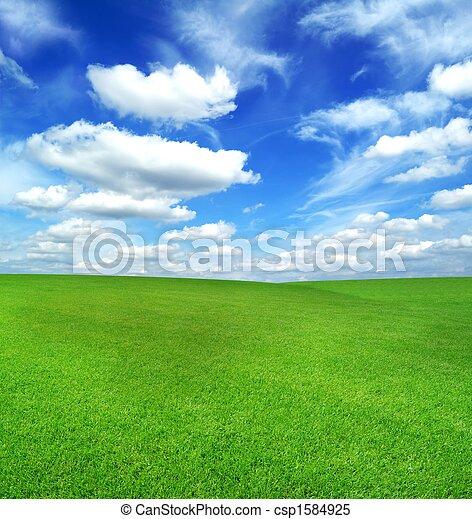 синий, поле, зеленый, небо - csp1584925