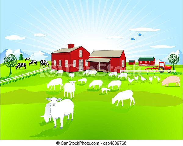 ферма, animals - csp4809768