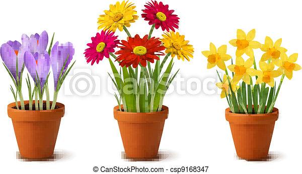 цветы, красочный, весна, pots - csp9168347
