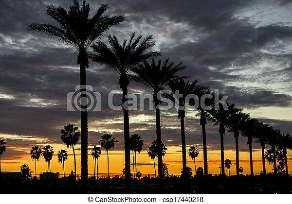 anaheim, закат солнца - csp17440218