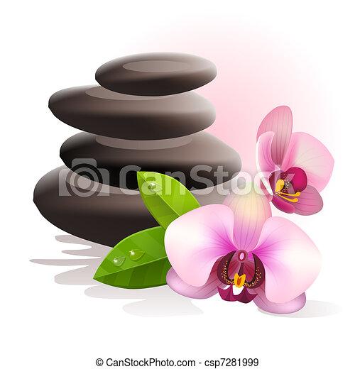 stones, спа, цветы - csp7281999